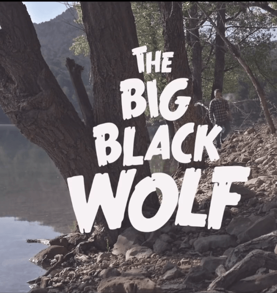 The big black wolf - Fizzy Soup