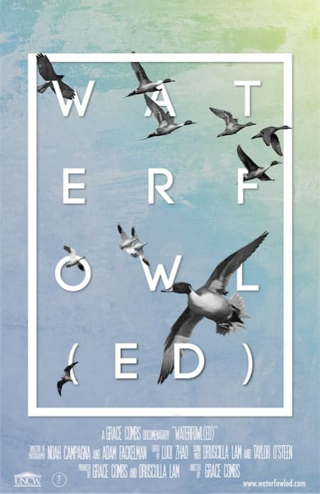 Waterfowl(ed)