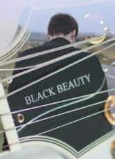 Black Beauty*