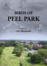 Birds of Peel Park*