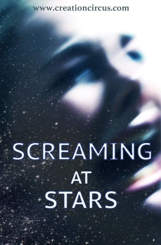 Screaming At Stars*