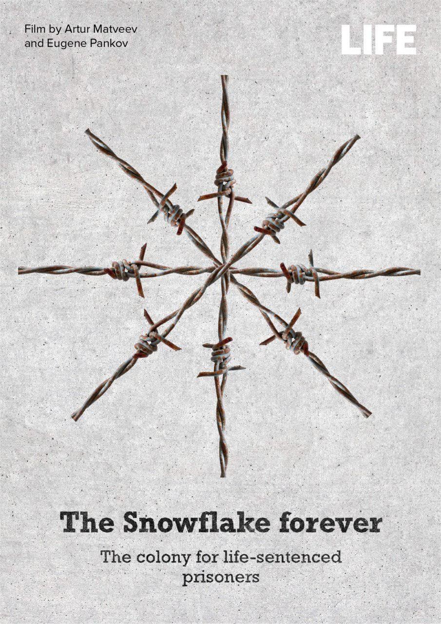 The Snowflake Forever